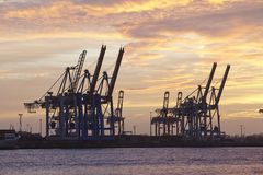 Hamburg - Port at sunset with container gantry cranes Royalty Free Stock Photo