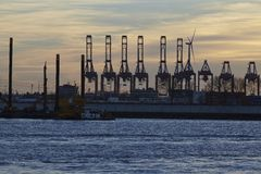 Hamburg - Port at sunset with container gantry cranes Stock Photos