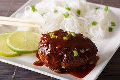 Hamburg Steak or�Hambagu  with garnish of rice vermicelli close- Royalty Free Stock Photography