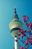 Hamburg television tower Stock Image