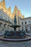 Hamburg, Town Hall Stock Image