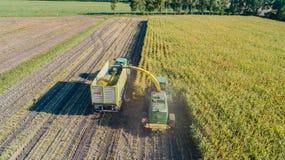 Hamburg Tyskland - September 04, 2018: Havreskörd, havrefoderskördearbetare i handling, skördlastbil med traktoren i Hamburg arkivfoto