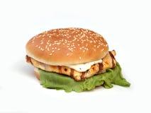 hamburgare Royaltyfri Foto