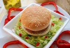 hamburgare Fotografering för Bildbyråer