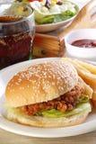 hamburgarehöna Royaltyfria Bilder