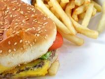 hamburgerów frytki zdjęcia stock