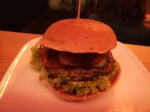 Hamburger à Cologne Image libre de droits