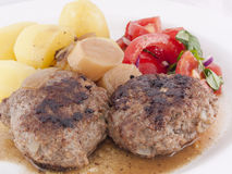 Free Hamburger Stock Photo - 16269750