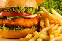 Free Hamburger Royalty Free Stock Photo - 20881045