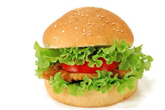 Free Hamburger Stock Images - 21281224