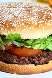 Hamburger. A juicy hamburger close up Stock Image