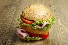 Hamburger Immagine Stock