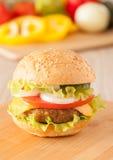 Hamburger Fotografia de Stock Royalty Free