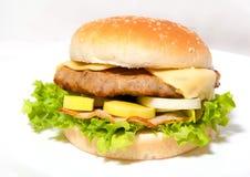 Hamburger8 Obrazy Royalty Free
