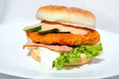 Hamburger6 Obraz Royalty Free