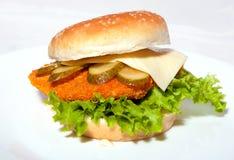 Hamburger5 Zdjęcia Royalty Free