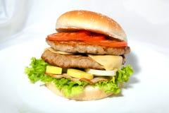 Hamburger4 Fotografia Stock