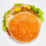 Hamburger1 стоковые фото