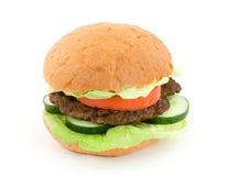 Hamburger Photographie stock libre de droits