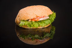 hamburger Imagem de Stock Royalty Free