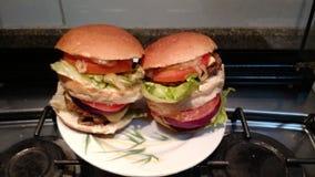 hamburger Fotografia Stock Libera da Diritti