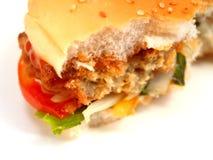Hamburger 8 stock photography