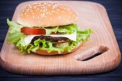 Hamburger américain de nourriture Image libre de droits
