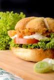 Hamburger appétissant Photos stock