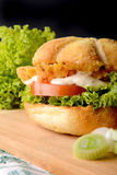 Hamburger appetitoso Fotografie Stock