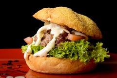 Hamburger appetitoso Immagini Stock
