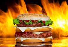 Hamburger au-dessus d'incendie Photo stock