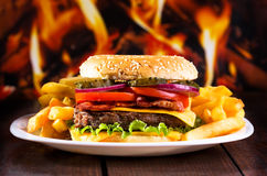 Hamburger avec des fritures image libre de droits