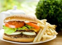 Hamburger avec des fritures Images stock
