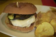 Hamburger avec les légumes grillés images libres de droits