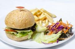 Hamburger avec des pommes frites Photographie stock libre de droits