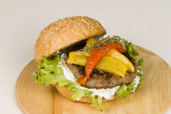 Hamburger. Stock Photography