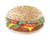 Hamburger on a bun over white background Stock Image