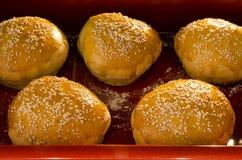 Hamburger buns Royalty Free Stock Photo