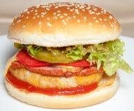 Hamburger, Burger lizenzfreie stockfotos