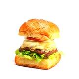 Hamburger carré Images stock