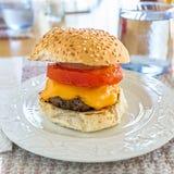Hamburger casalinghi Fotografia Stock Libera da Diritti