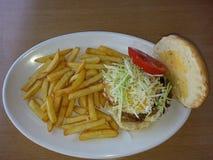 Hamburger casalingo Immagine Stock Libera da Diritti