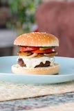 Hamburger casalingo Fotografie Stock