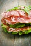 Hamburger casalingo con gli ortaggi freschi Fotografie Stock
