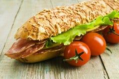 Hamburger casalingo con gli ortaggi freschi Fotografia Stock Libera da Diritti