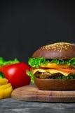 Hamburger casalingo con gli ortaggi freschi Immagini Stock