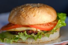 Hamburger casalingo grande Hamburger di gusto fotografie stock