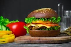Hamburger caseiro com legumes frescos Fotografia de Stock Royalty Free