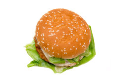 Hamburger with cheese from above Royalty Free Stock Photography