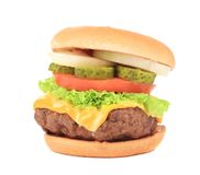 Hamburger with cheese and meat. Stock Photos